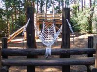 吊り橋型ロープ遊具の張替